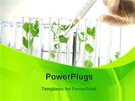 Scientist testing plants with syringe powerpoint theme