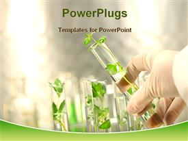 Small plants in test tube presentation background