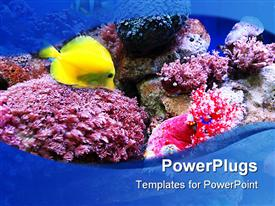 PowerPoint template displaying an ocean with fish and plants in it showing sea life
