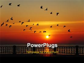 PowerPoint template displaying flight of birds on a background of a rising sun in the background.