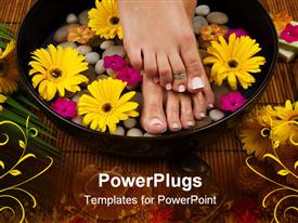 PowerPoint template displaying spa treatment with aromatic gerbera daisies healing stones olive oil soaps and herbal water