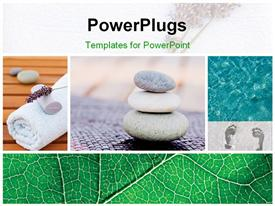 PowerPoint template displaying a number of zen stones with leaves in the background