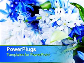 Blue bouquet of first spring flowers close-up powerpoint theme