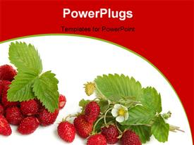 PowerPoint template displaying a lot of strawberries with white background and place for text