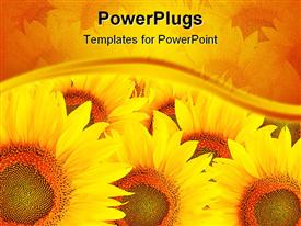 PowerPoint template displaying a bunch of sunflowers with their reflection in the background
