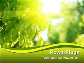 PowerPoint template displaying a number of green leaves along with sunlight with blurred background