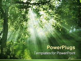 PowerPoint template displaying evening light in the background.