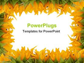 PowerPoint template displaying sunflower plants frame with a white background