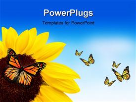 PowerPoint template displaying a sunflower with a lot of butterflies around it
