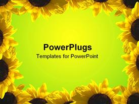 PowerPoint template displaying border of sunflower illuminated by sun
