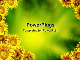 PowerPoint template displaying multiple yellow sunflowers on edges with green background at center