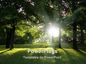 PowerPoint template displaying bit of sun through the pure green trees, fresh mowed grass covered with morning dew