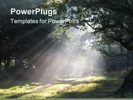 PowerPoint template displaying shafts of morning sunlight lighting a forest path