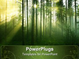 PowerPoint template displaying sun rays crossing a misty forest photographed in an early summer morning