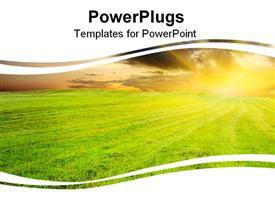 PowerPoint template displaying yellow amazing sunset in the green field in the background.