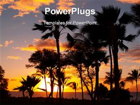 PowerPoint template displaying maui sunset in the background.