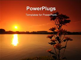 PowerPoint template displaying sunset lake and flower in the parks in the background.