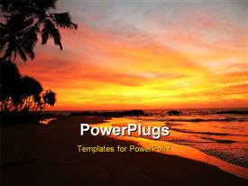 PowerPoint template displaying tropical island palm beach at sunset time