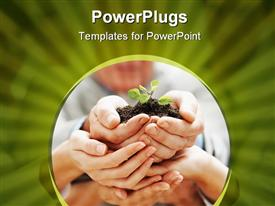 PowerPoint template displaying team growth - Business colleagues holding a young plant together in the background.