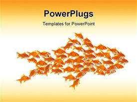 PowerPoint template displaying business teamwork concept with goldfishes together in water