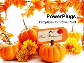 PowerPoint template displaying some pumpkins with yellow flowers on a white background