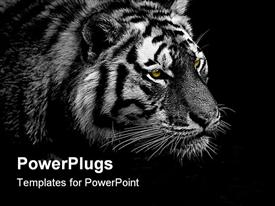 PowerPoint template displaying a black and white depiction of a tiger with dark background