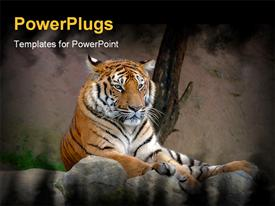 PowerPoint template displaying tiger_0309 in the background.
