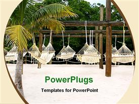 PowerPoint template displaying many hammocks hanging on wooden poles, palm tree and trees in the background