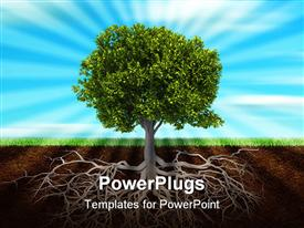 PowerPoint template displaying section in soil showing the root of a tree in the background.