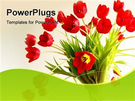 PowerPoint template displaying red tulips in a vase