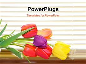 Tulip flowers on the basket by the window blinds powerpoint design layout