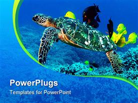 PowerPoint template displaying green sea turtle cleaning station in the background.
