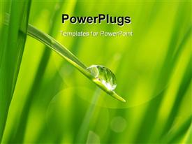 PowerPoint template displaying the water drop along with grass and greenery in background