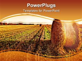PowerPoint template displaying a wide wheat field showing a roll over a clear sunset sky