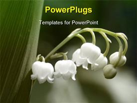 PowerPoint template displaying a close up view of a branch of a plant with five white flowers