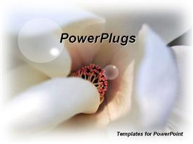 PowerPoint template displaying close up view of center of Magnolia flower showing white tubular strands