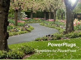Blossomed trees line this paved garden pathway template for powerpoint