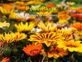 Close up shot of a flower in a field of flowers powerpoint design layout